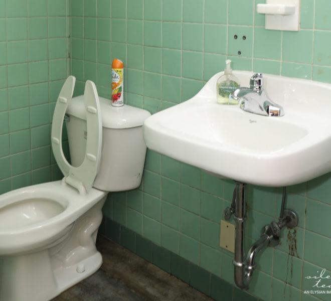 SAFE Homes Rape Crisis Coalition- bathroom